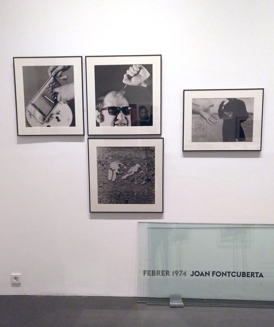JOAN FONTCUBERTA FOTOGRAFIA ANALÒGICA