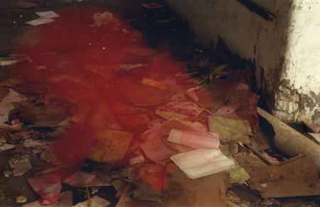 Fanny Lichtenstein - foto a color